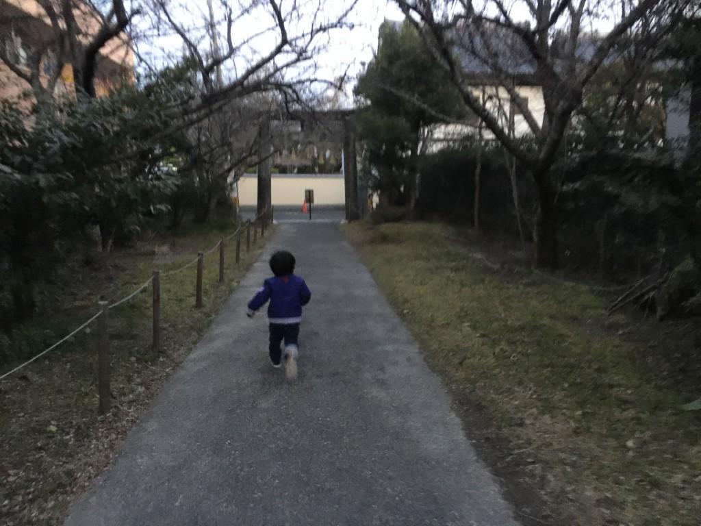 走ってる姿だけ見ると、とっても速く見えます。